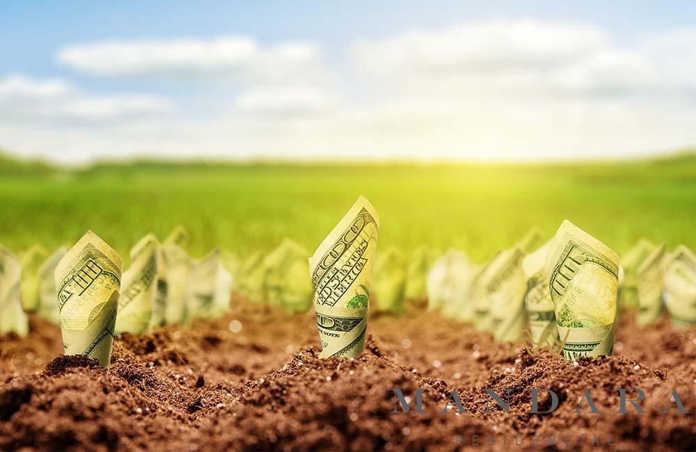 ¿Por qué invertir en tierra?