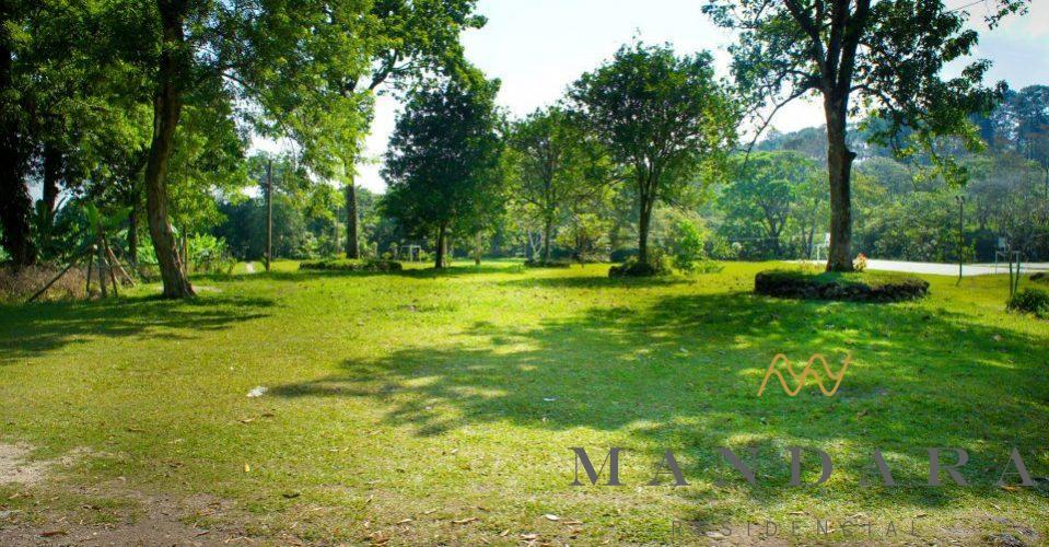 Áreas Verdes en Veracruz